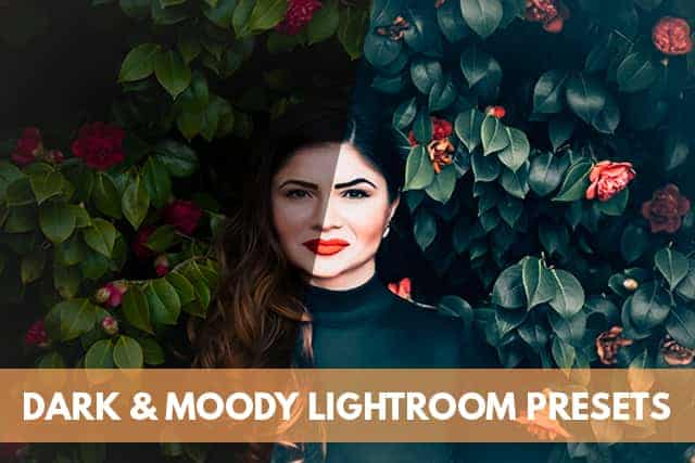 Dark and Moody Lightroom Presets For Mobile